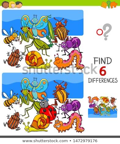 Bevinding verschillen spel insecten dieren cartoon Stockfoto © izakowski
