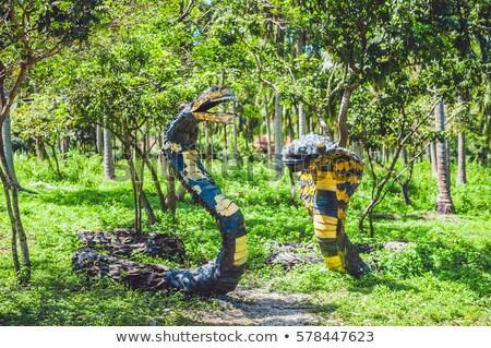 Snakes reciclado borracha desperdiçar reciclagem assinar Foto stock © galitskaya