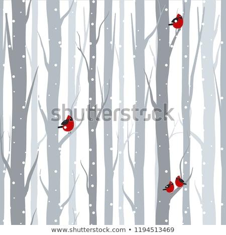 cute · christmas · winter · beer · doodle - stockfoto © margolana