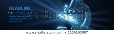 Lencsék optikai mikroszkóp tanulás biológiai minták Stock fotó © galitskaya