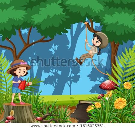 Scena due ragazze boschi illustrazione Foto d'archivio © bluering
