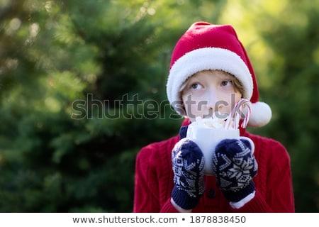 Portré aranyos örömteli fiú mályvacukor száj Stock fotó © Lopolo