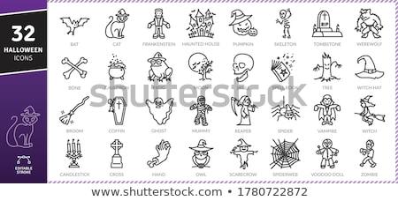 Vektör ayarlamak örümcek simgeler toplama karikatür Stok fotoğraf © freesoulproduction