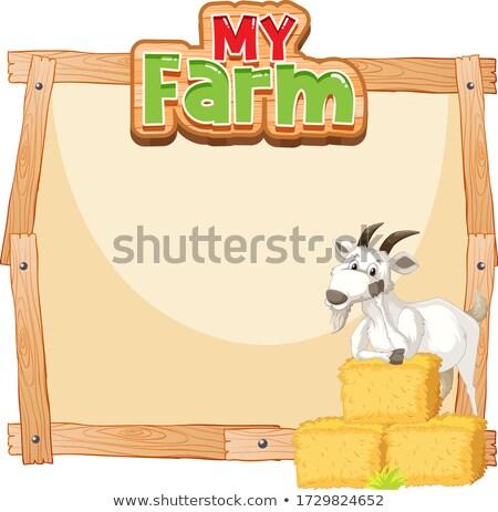 Frontera plantilla diseno cabra heno ilustración Foto stock © bluering