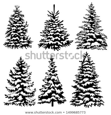 Stockfoto: Ingesteld · christmas · bomen · eenvoudige · ontwerp