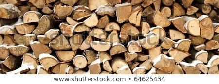 сжигание кусок древесины бензопила красный землю Сток-фото © prill