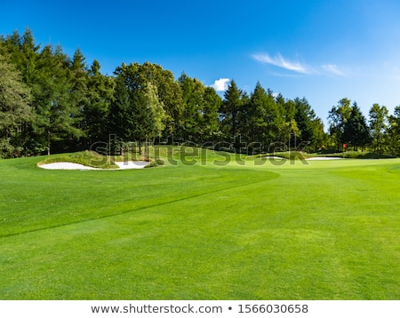 Golf Green Flag Stock photo © iTobi