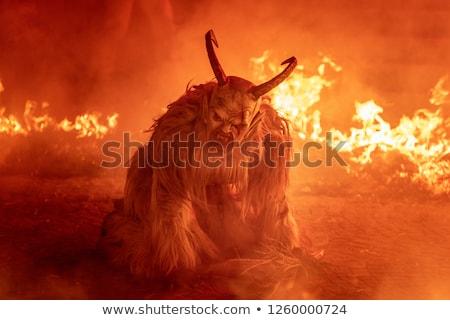 Bestia piekła jasne płomienie twarz psa Zdjęcia stock © morrbyte