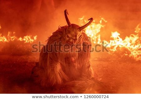 Beest hel heldere vlammen gezicht hond Stockfoto © morrbyte