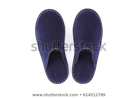 Házi kék házi cipők egy pár izolált Stock fotó © boroda
