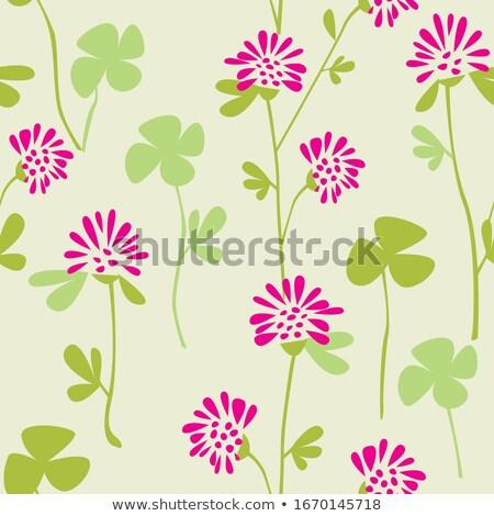 résumé · cute · trèfle · fleur · printemps · feuille - photo stock © rioillustrator