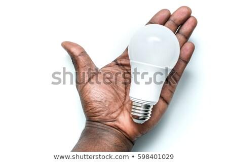 Foto d'archivio: Mano · elettrici · lampadina · isolato · bianco