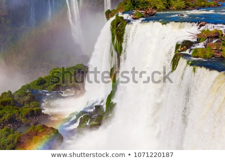 Photo stock: Magnifique · une · sept · naturelles · eau · jungle
