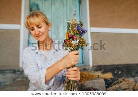 Woman doing dry walling, working Stock photo © Kzenon