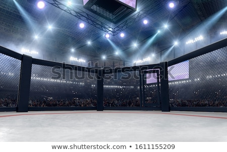 Gemengd vechten sport spier strijd pijn Stockfoto © nickp37