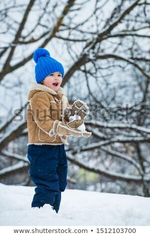 Crianças inverno parque jogar tempo ao ar livre Foto stock © adam121