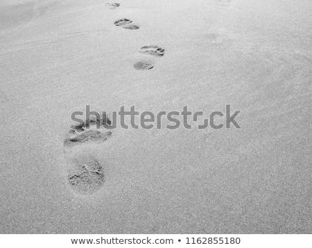 areia · praia · mar · báltico · luz · oceano - foto stock © meinzahn