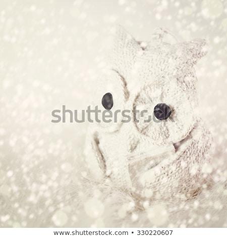 Tricotado cerâmico leitura coruja livro natal Foto stock © dariazu