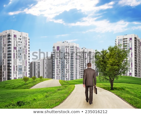 Businessman walks on road. Rear view. Buildings, grass field and sky with hexagons Stock photo © cherezoff