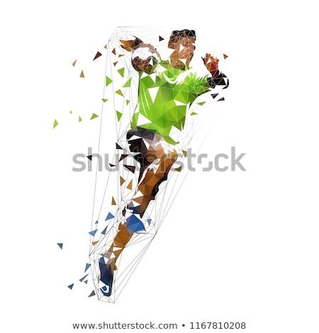 гандбол · игрок · счастливым · пейзаж · волос · улыбаясь - Сток-фото © patrimonio