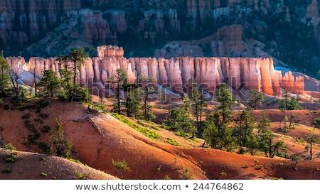 Anfiteatro inspiração ponto desfiladeiro parque Utah Foto stock © billperry