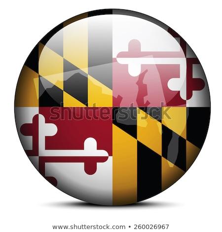 Maryland banderą przycisk złota metal Zdjęcia stock © Bigalbaloo