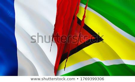 Franciaország Guyana zászlók puzzle izolált fehér Stock fotó © Istanbul2009