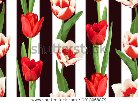 Red tulips pattern. Spring bunch of flowers. Stock photo © netkov1