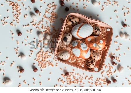 altın · yumurta · sepet · beyaz · doğa · arka · plan - stok fotoğraf © OleksandrO