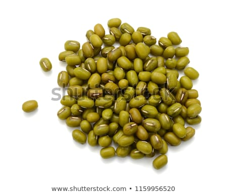 Mung beans and lentil sprouts Stock photo © Digifoodstock