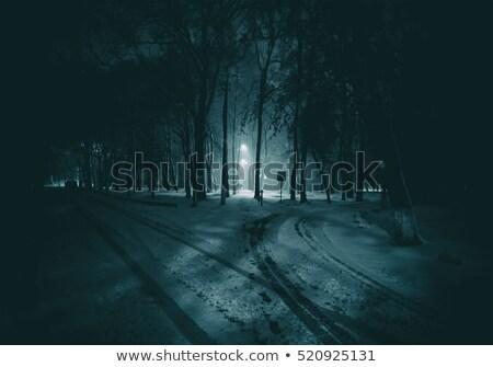 雪 · カバー · ツリー · 冬 · 自然 - ストックフォト © digifoodstock