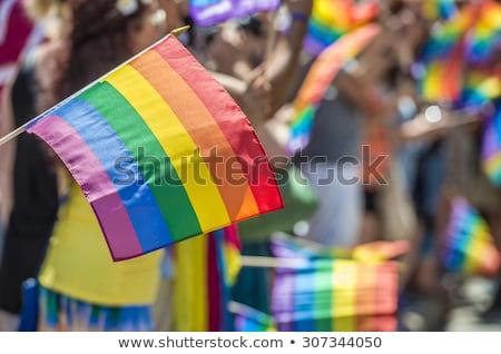 lezbiyen · el · gökkuşağı · eşcinsel · gurur · bayrak - stok fotoğraf © evgeny89