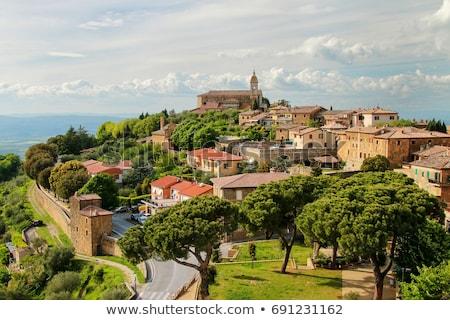 panorámica · vista · Toscana · paisaje - foto stock © boggy