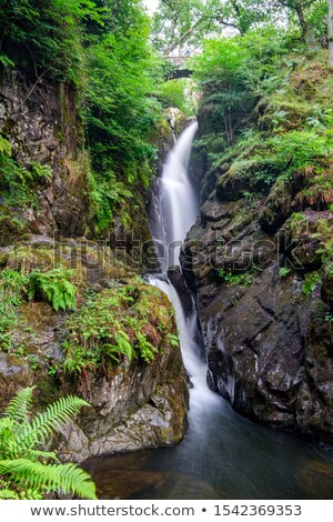 Aira Force Waterfall in the Lake District. England.  Stock photo © CaptureLight