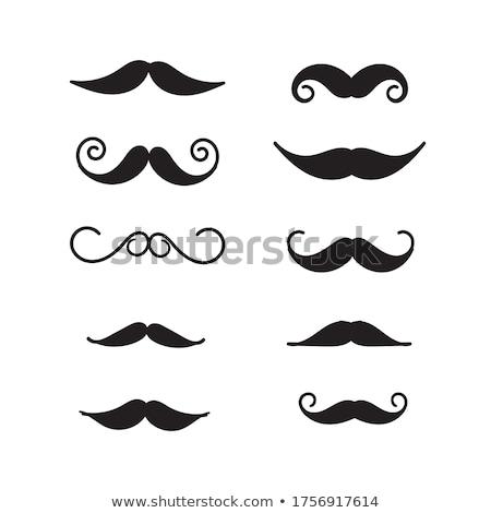 stílusok · férfiak · hipszterek · klasszikus · terv · férfi - stock fotó © anna_leni