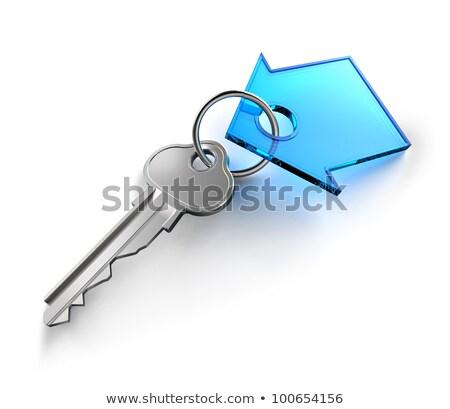 House key on a house shaped keychain, 3d illustration Stock photo © tussik