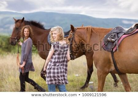 hátsó · nézet · fiatal · nő · lovaglás · ló · vidéki · fa - stock fotó © monkey_business
