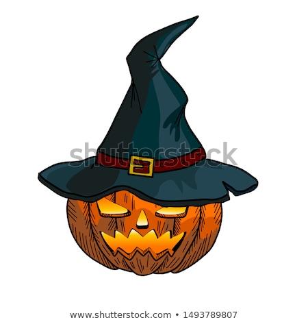 halloween · bruja · calabaza · ilustración · feliz - foto stock © lightsource