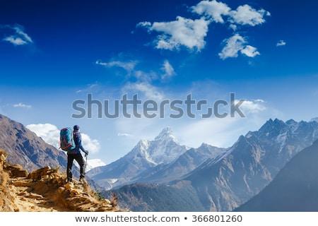 Dağ uzun yürüyüşe çıkan kimse bakıyor güzel manzara Stok fotoğraf © stevanovicigor