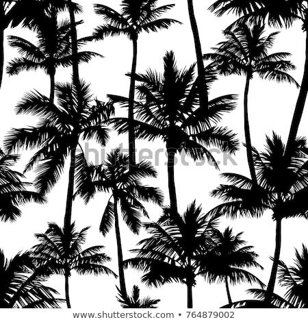 Fekete pálmafák végtelen minta ikonok fa absztrakt Stock fotó © blumer1979