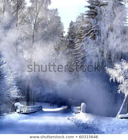 зима озеро Финляндия холодно утра небе Сток-фото © Juhku