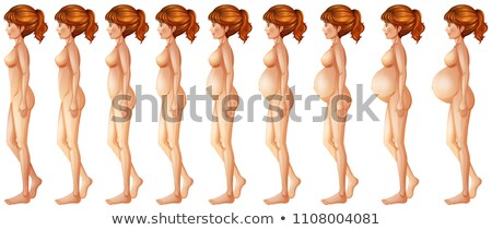 Different stages of pregancy Stock photo © bluering