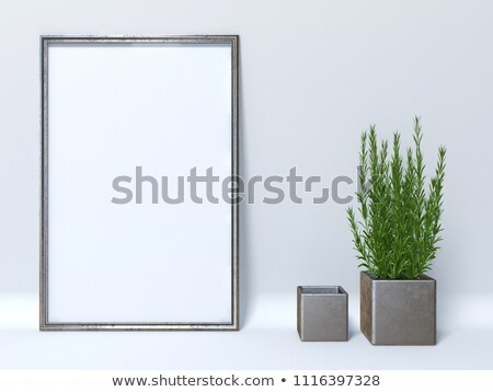 Mock up poster with two cube plant pots 3D Stock photo © djmilic