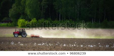 veld · agrarisch · machines · Rood · trekker · hemel - stockfoto © erierika