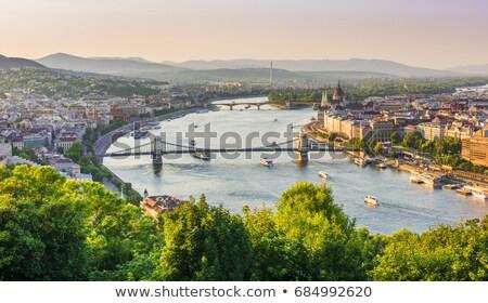 парламент Дунай известный мостами Сток-фото © Givaga