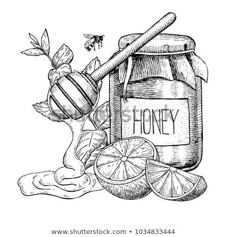 Gyógynövény tea bögre méz felső kilátás üveg Stock fotó © dash