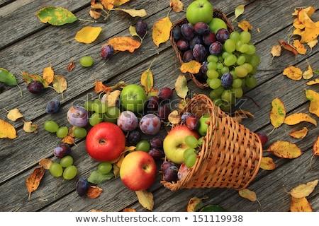 Najaar stilleven vruchten bladeren appels peren Stockfoto © karandaev