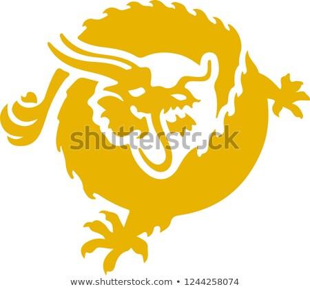 BSV - Binance. The Crypto Coins or Cryptocurrency Logo. Stock photo © tashatuvango