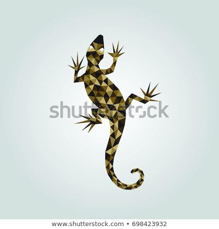 camaleão · esboço · desenho · animado · ilustração · fundo - foto stock © blaskorizov