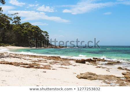 Beautiful and famous Hyams Beach Australia Stock photo © lovleah